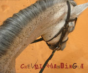 logo chevalmandingue